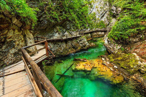 Vintgar gorge and green river,Bled,Triglav- Slovenia - 68102967