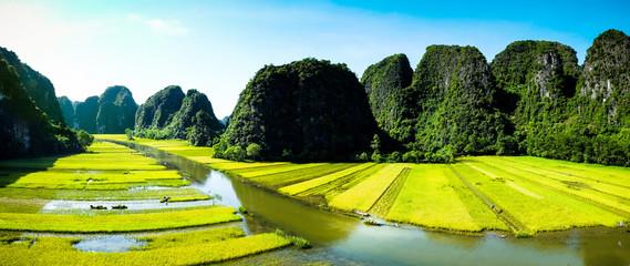 Rice field and river, NinhBinh, vietnam landscapes