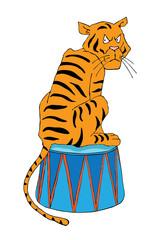 Circus illustration, tiger