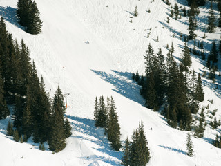 downhill ski slopes in Saalbach Hinterglemm