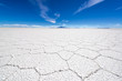 Uyuni Salt Flat Details - 68105909