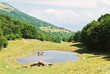 rural view in Monte Baldo mountains, Italy