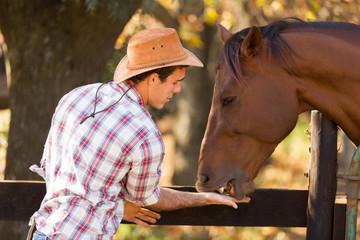 cowboy feeding a horse