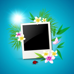 Summer vector background