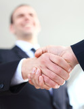 Business handshake. Business man giving a handshake