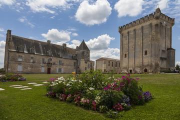 Chateau et donjon de Pons