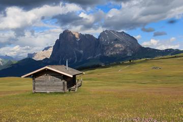 Sassopiatto e Sassolungo dall'Alpe di Siusi