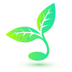Bio icon.  Green natural design element. Abstract sprout with le