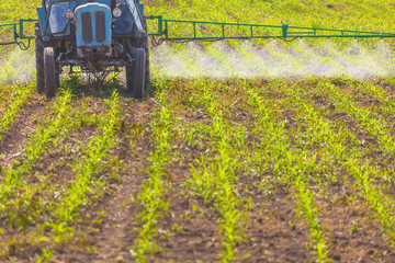 Spreading herbicide