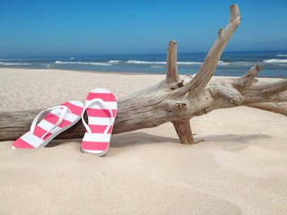 flip flops at wooden log at the sea