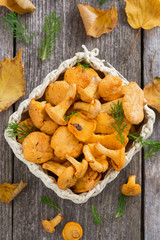 fresh forest chanterelle mushrooms in a basket, top view