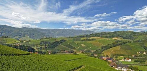 Oberkirch Sommer
