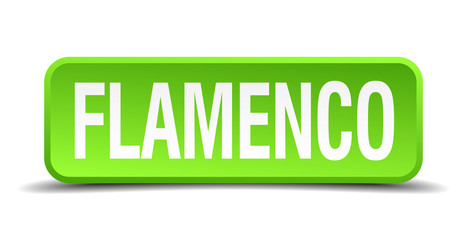 Flamenco green 3d realistic square isolated button