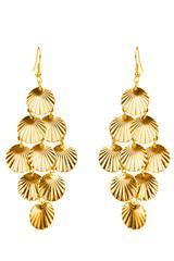 Pair of golden earrings