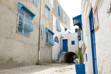 Blue doors, window and white wall of building in Sidi Bou Said