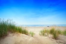 Playa tranquila con dunas y hierba verde. Tranquila del océano
