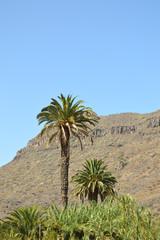 Berge in Gran Canaria
