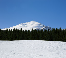 Alpengipfel vor Wald und Schnee