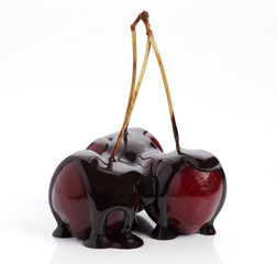 group of chocolate covered cherries