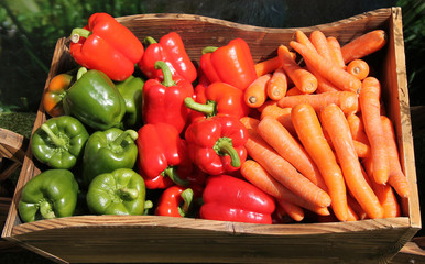 A Display of Peppers and Carrots in a Wooden Box.