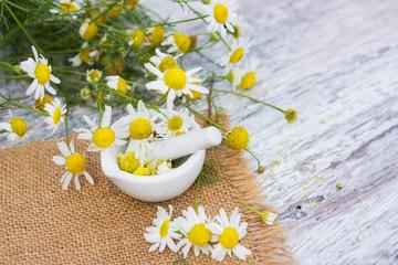 Heilpflanze Kamille