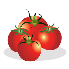 Tomatoes group vector illustration.