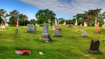 Timelapse view in a cemetery