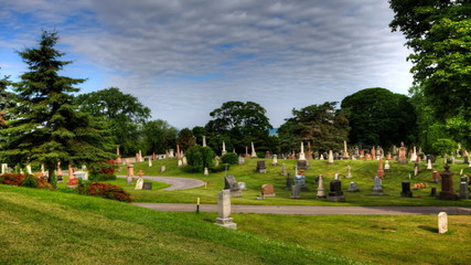 A blue sky timelapse view in a cemetery