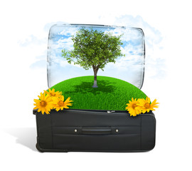 Earth with trees and green grass in travel bag