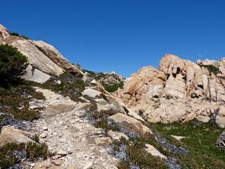 Rocks and sea in La Maddalena, Spargi island, Sardinia