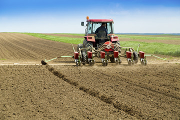 Young farmer sowing crops at field