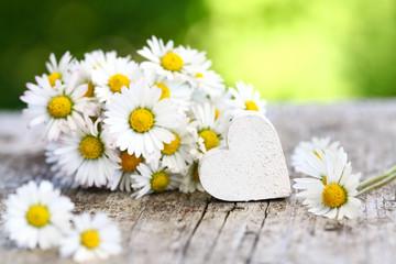 Gänseblümchen & weißes Herz