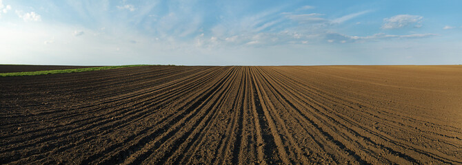 Arable land panorama