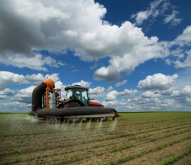 Tractor spraying soybean crops field at spring