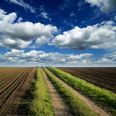 Rural road trough fields of arable land