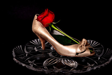 Female Shoe and rose