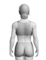 Female body artwork