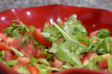 tomatoes salad with arugula