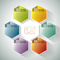 Hexagon Flat Infographic