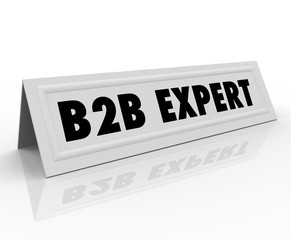 B2B Expert Speaker Presenter Name Tag Panelist Sharing Informati