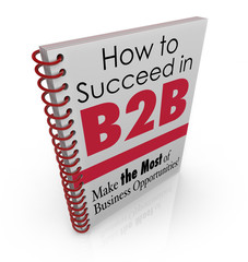 How to Succeed in B2B Business Advice Information Book