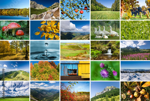 Fotobehang Lente Collage of nature photos