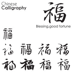 "Various kind Chinese Calligraphy of ""blessing,good fortune"""