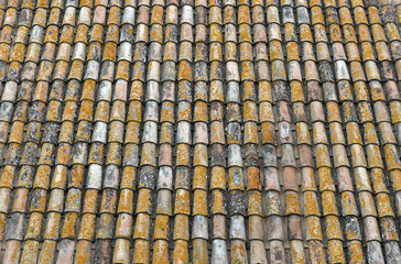 Tegole di vecchio tetto con muschi e licheni