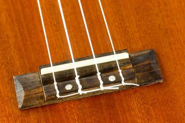close up part of ukulele hawaiian guitar