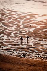 Surfers bodyboard in sunset