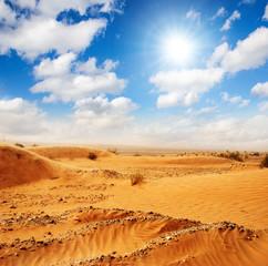 Sahara: desert dunes