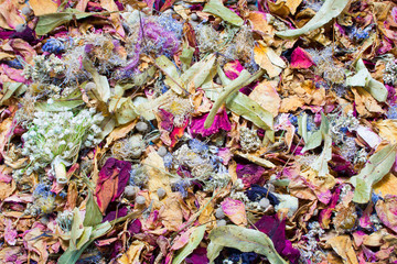 Dried flowers and leaf background.