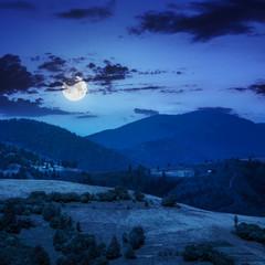 village on hillside meadow near forest in mountain at night
