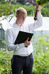 Garden expert controlling beet condition
